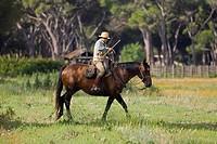 europe, italy, tuscany, alberese, uccellina park, ranch alberese, cowboy
