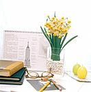 Bouquet of flowers, vase, glasses and books