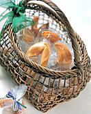 Fortune cookies in basket