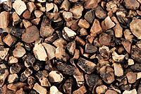 Nutgrass Galingale Rhizome, Cyperi Rhizoma, Xiang Fu