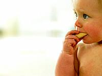 Baby eating a cookie