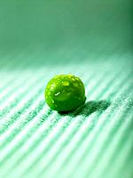 One green Pea (thumbnail)
