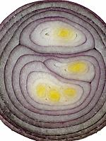 Raw Food, vegetables, Red Onions