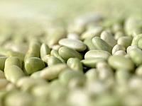 Raw Foods, Flageolet Beans