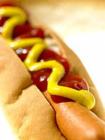 Food _ Hot Dog