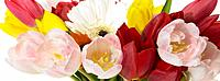 Assorted flowers in a bouquet (thumbnail)