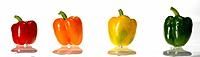 Panoramic Colours, Coloured Peppers