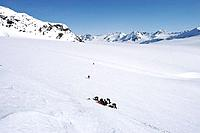 Mountaineer Group Traverses Eagle Glacier SC AK Spring Chugach Mtns