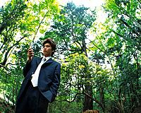 Image of a Businessman Checking His Mobile Phone In the Forest, Low Angle View