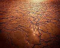 Cracked soil in drought