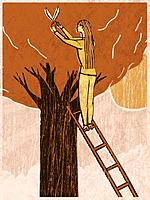 A woman on a ladder shearing a tree