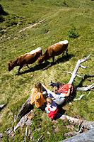 Austria, Salzburger Land, couple with daughter 6_7 watching cattle
