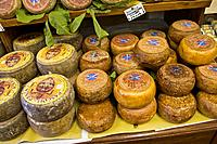 Italy, Tuscany, Various cheeses in cheese shop