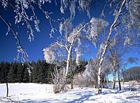 Germany, Europe, Nachrodt_Wiblingwerde, Sauerland, North Rhine_Westphalia, winter, winter landscape, snow, snow_covere