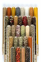 Test tubes with herbs, condiments and spices