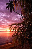 Stunning tropical sunset shining through foliage  Beqa Island, Fiji