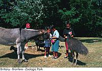 Brittany _ Branfere _ Zoologic Park