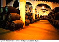 Spain _ Andalousia _ Jerez _ Bodega Gonzalez Byass Spain