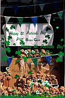 Ireland _ Dublin _ National Holiday _ St Patrick's Day