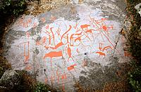 Rock painting and engraving, on the ´World Heritage list of UNESCO´, Alta,  Norway
