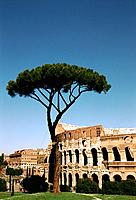Italy _ Latium _ Roma _ Coliseum