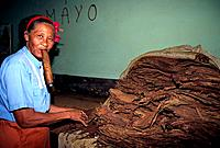Cuba - The Havana - Partagas Manufacture (thumbnail)