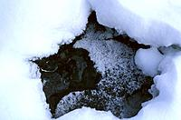 Mountain _ Belleville Valley _ Ice and Water