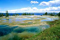 USA - National Park - Yellowstone - West Thumb (thumbnail)