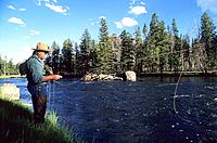 USA _ National Park _ Yellowstone _ Fisherman