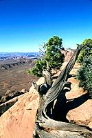 USA _ National Park _ Utah _ Canyonland