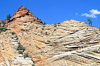 USA _ National Park _ Zion
