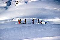 Mountain _ Belleville Valley _ Skiing