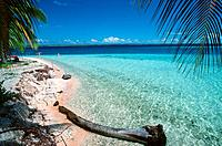 French Polynesia _ Tuamotu