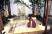Spa _ Preparation of milk and honey bath with rose petals