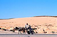 Tunisia _ The South _ Jebel Dahar Region _ Debebcha _ sand dune