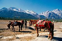 China _ Yunnan _ Lijiang _ Snow Mountain