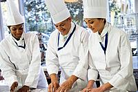 Multi_ethnic chefs preparing food