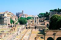 Italy _ Rome _ Latium _ Roman Forum and the Palatine