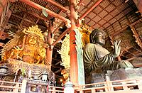 Japan _ The west of Honshu _ Nara _ Todai ji Temple _ Grand Buddha Vairocana