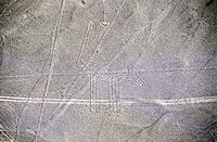 Peru _ Lines of Nasca _ The dog