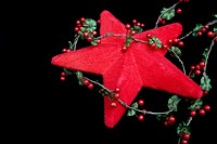 A star and holly christmas decoration