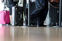 Business people with luggage waiting in line at airport terminal