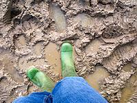 Person in rubber boots standing in mud