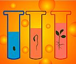 Closeup of test tubes with growing plants