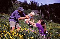 A family hiking in wildflowers in Alta Utah