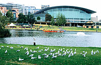 Adelaide Convention Centre on banks of Torrens River. South Australia, Australia
