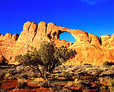Arches National Park. Utah. USA