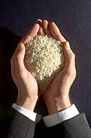 Rice grains in hands