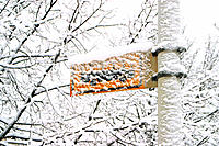Snow-covered bus stop sign