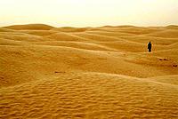 Sand dunes, Sahara desert. Douz, Tunisia